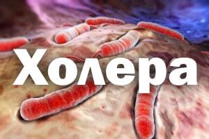Причины, симптомы, профилактика и лечение холеры