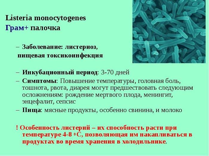 Проявление листериоза