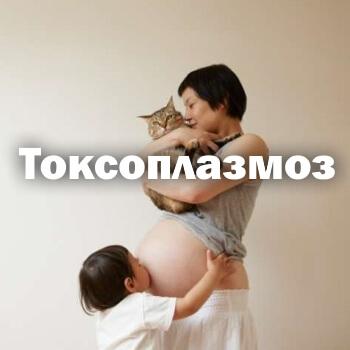 Токсоплазмоз - симптомы у человека