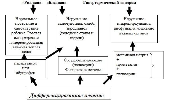 Схема розовой и белой лихорадки
