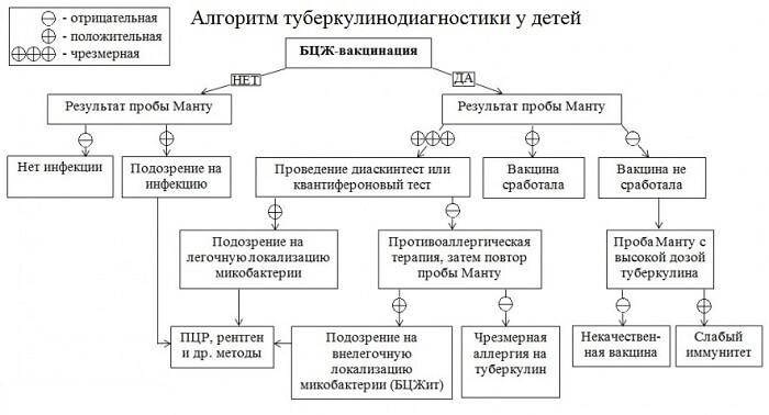 Алгоритм определения результатов